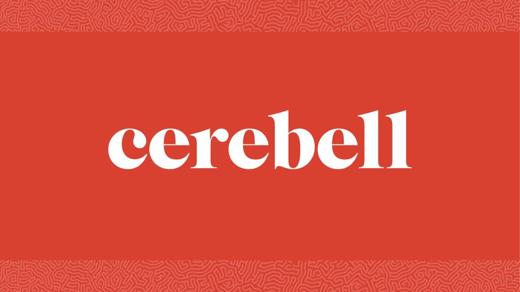 cerebell_presentation3